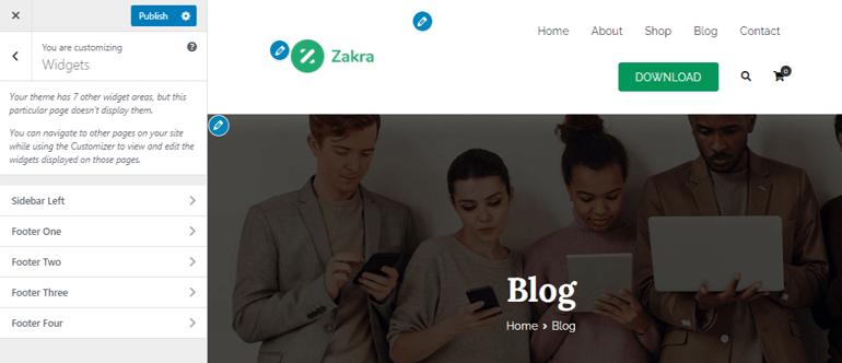 widget-customizer-preview in Zakra theme