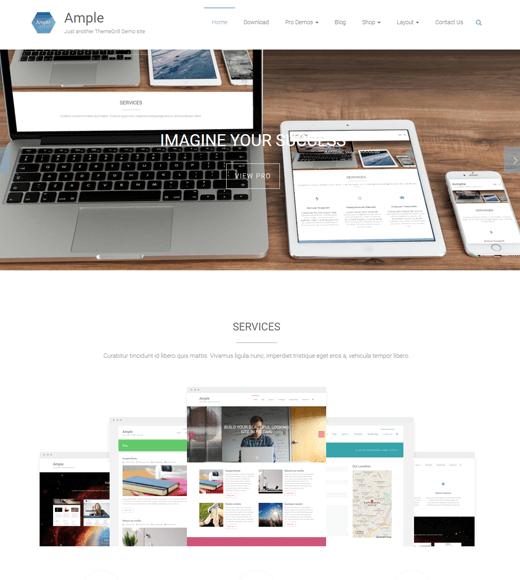 Ample-WordPress-multipurpose-theme
