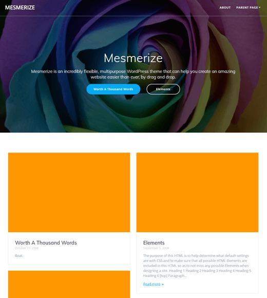 Mesmerize-theme-the most versatile wordpress themes