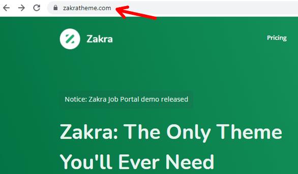zakra-theme-domain-name