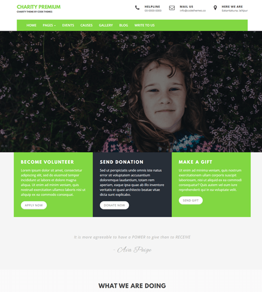 Charity Review Theme