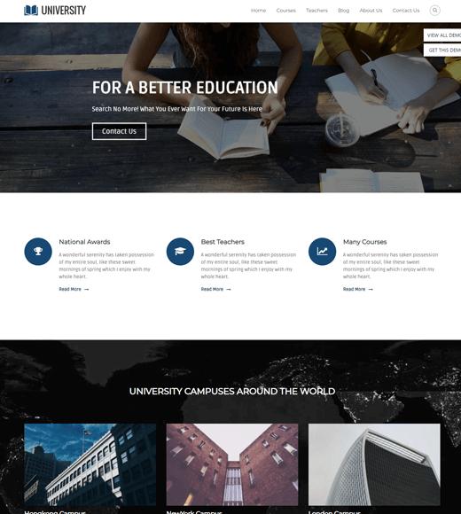 Flash Pro Education WordPress Theme