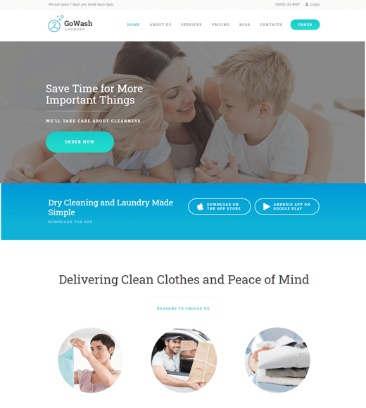 Go Wash Cleaning Business Theme