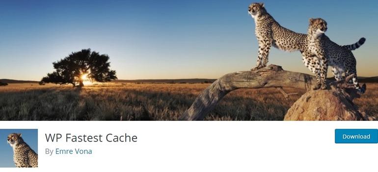 best wordpress cache plugin