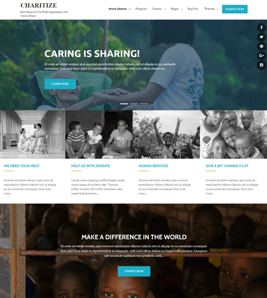 Charitize Best WordPress Themes for Nonprofits