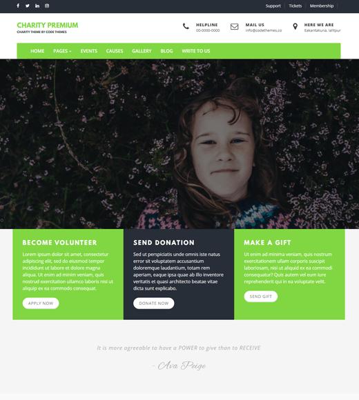 Charity Review Non Profit WordPress Theme