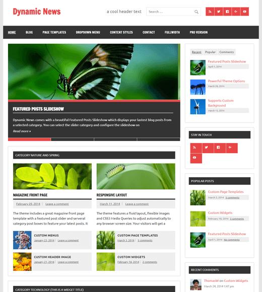 Dynamic News Lite Free WordPress News Magazine Theme