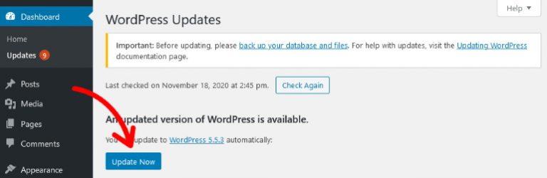 wordpress-update-now