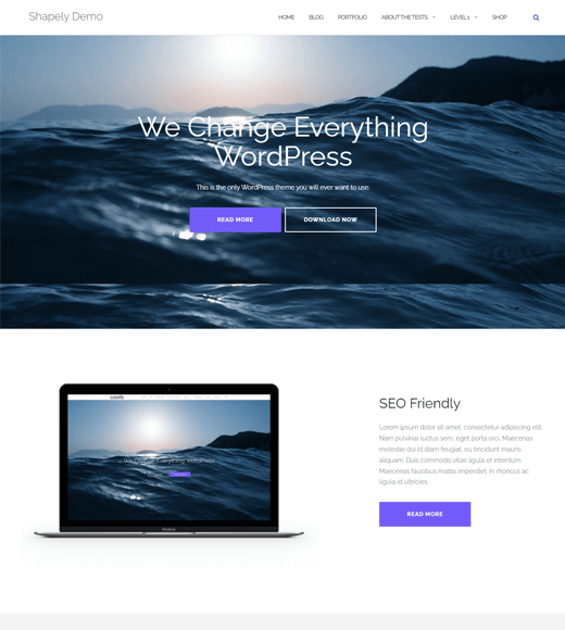Shapely Best Single-Page WordPress Themes