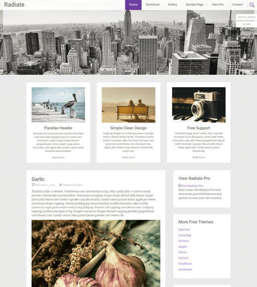 Radiate WordPress Theme