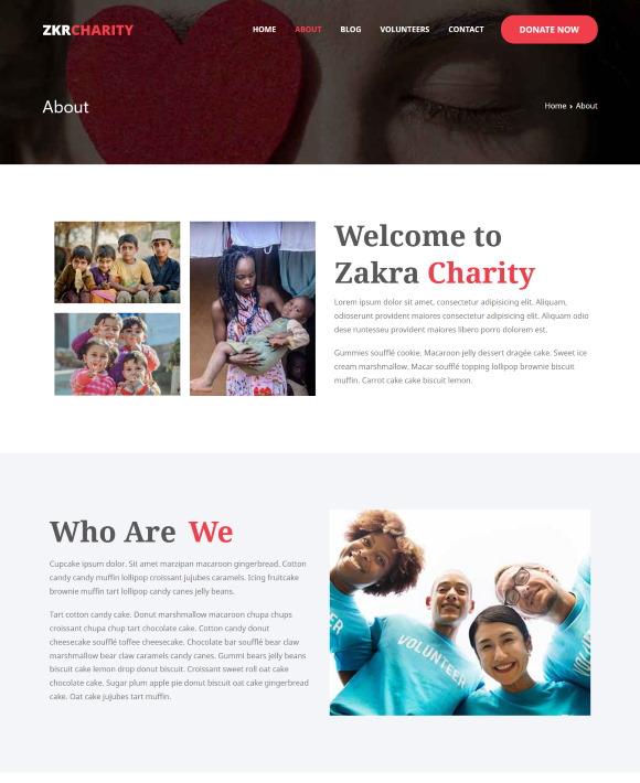 About – Zakra Foundation