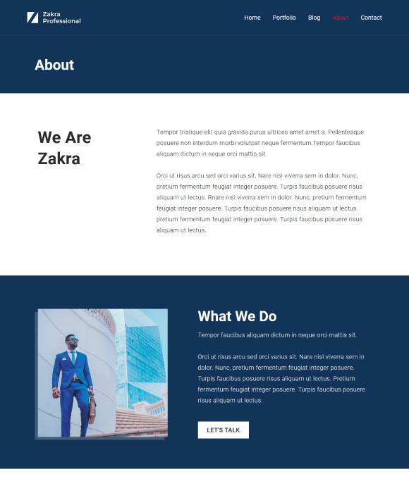 About – Zakra Professional
