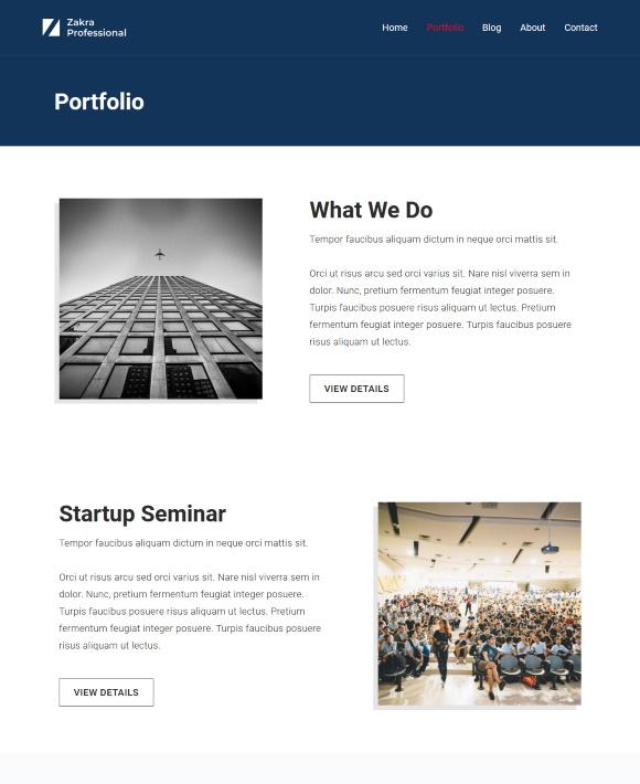 Portfolio – Zakra Professional