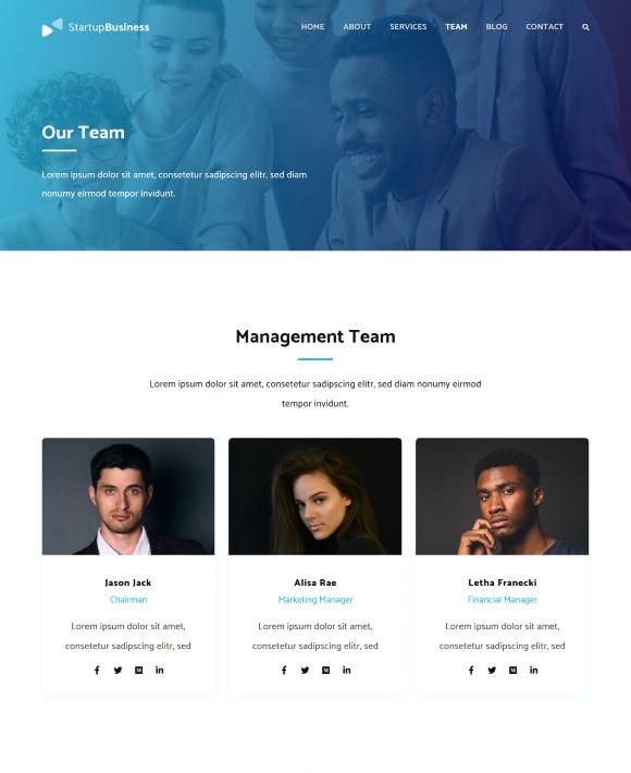 Team – Startup Business